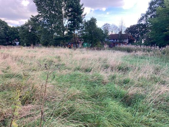 Prime Development Opportunity at Barlaston, Staffordshire, ST12 9DE